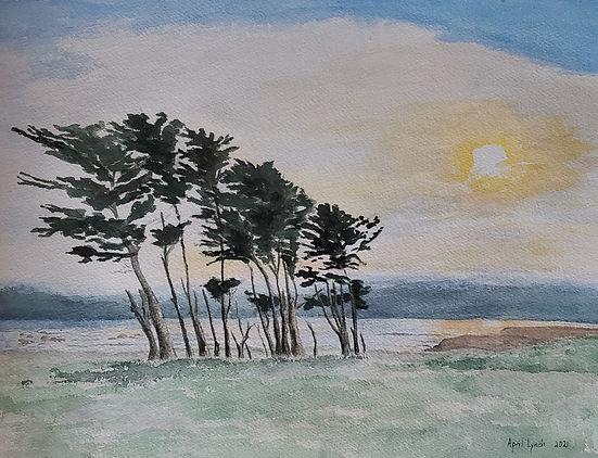 AprilLynch-CypressTrees-watercolor.jpg