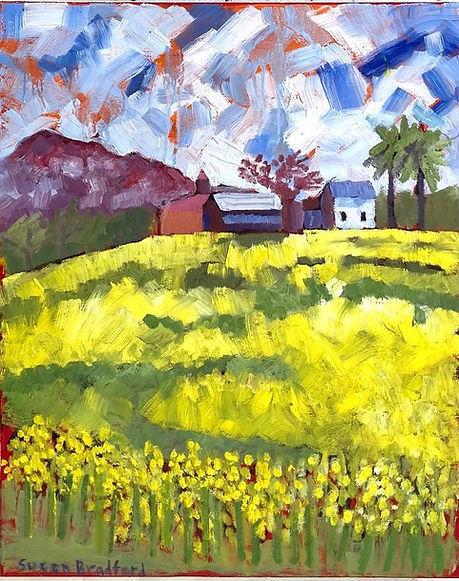 SusanBradford-The Mustard-Oil.jpeg