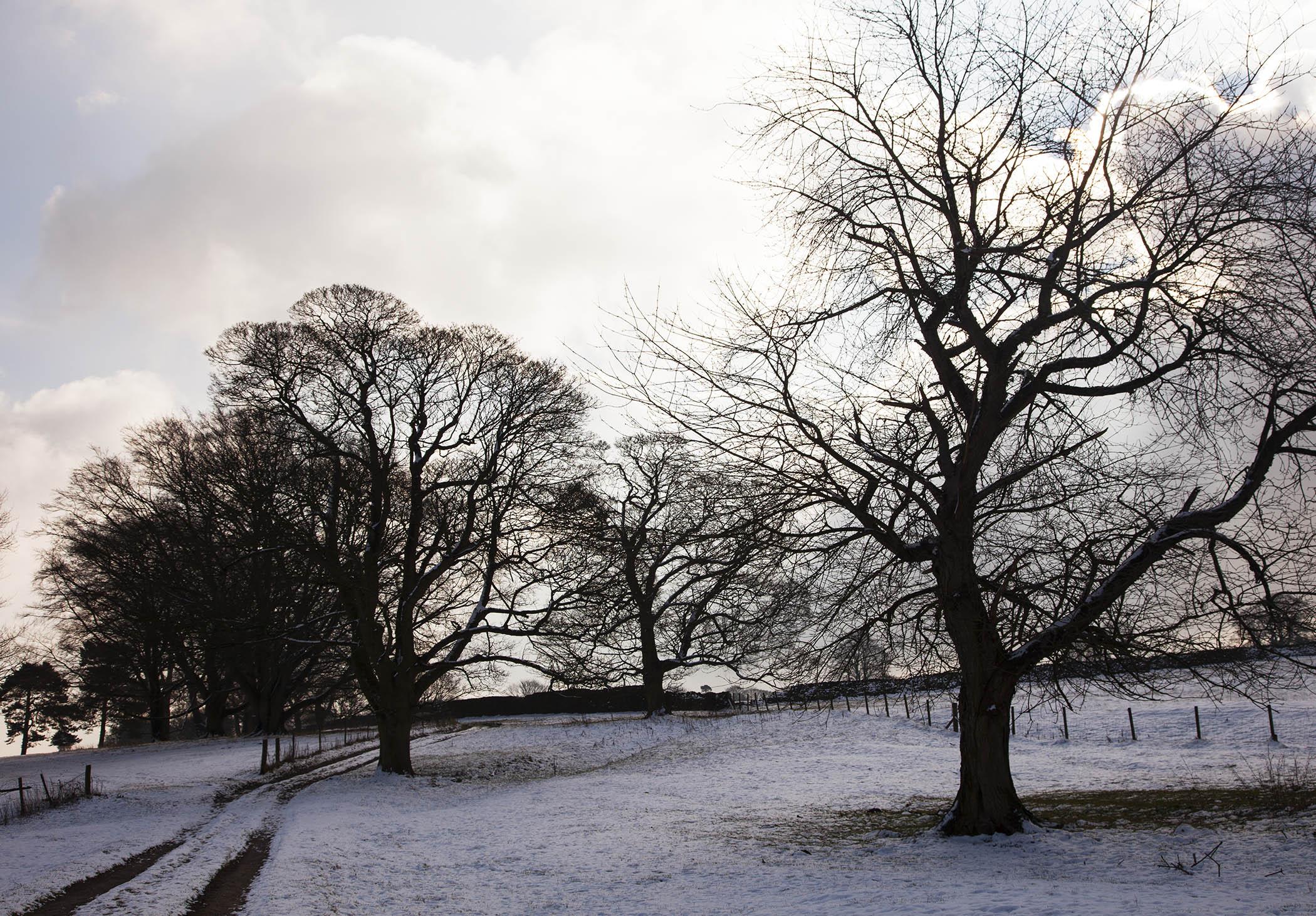 Alderwasley Park