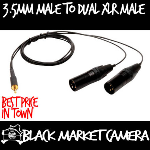 3.5mm male to dual XLR male