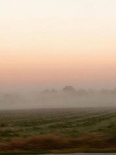 Hunter Valley Singleton NSW