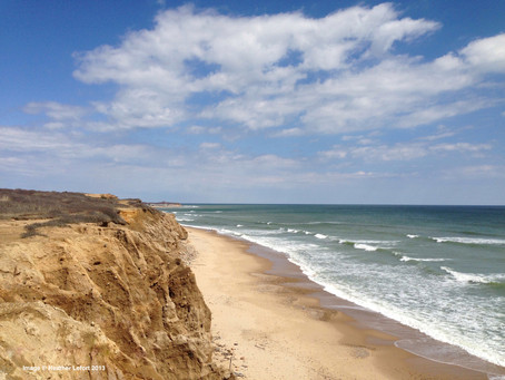 ENVIRONMENTAL FACTORS THAT AFFECT A HOME BY THE SEA
