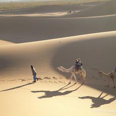 Sahara Afrika