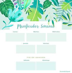 planner 1.jpg