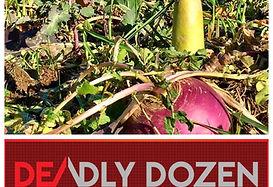 RWWP Deadly Dozen Logo.jpg