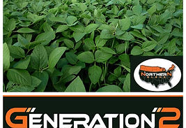 Real World Gen 2 Logo.jpg