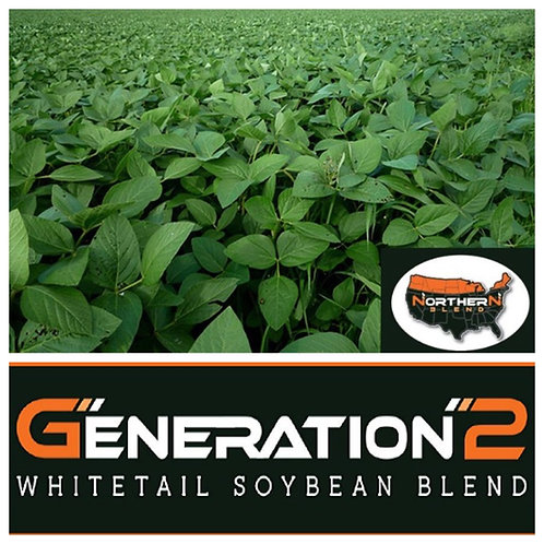 Real World Northern Soybean Blend