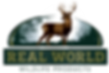 Real World WP Logo.png