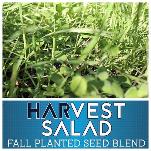 Real World Harvest Salad - 1/2 acre bag