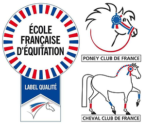 Ecole Francaise d'equitation Poney Club et Cheval Club de France du 79