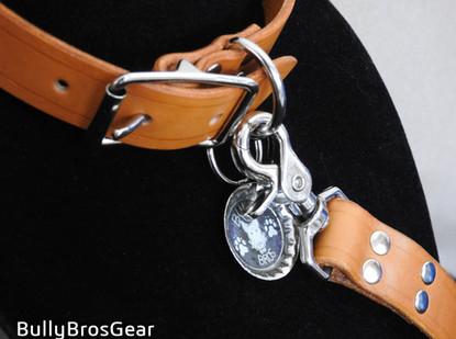 Tan Leash/Collar Set