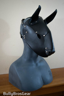 Onyx Bully Hood