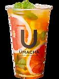 UMACHA_113165_m_1108_3a.png