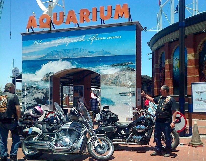 Point 14 - Two Oceans Aquarium