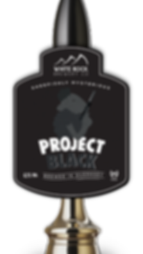 Project Black Mockup.png