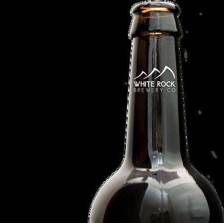Bottle Neck New Logo.png