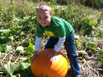 Get Ready for Pumpkins, Apples, and Fun