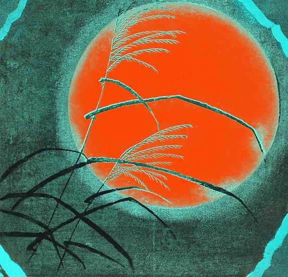 Grass Across The Moon