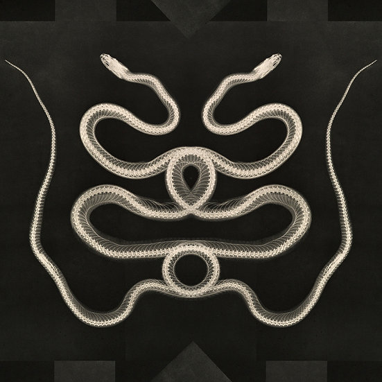 The Serpent's Cycle II