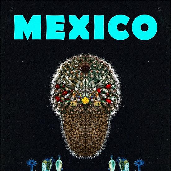 Mexican Mammillaria Black