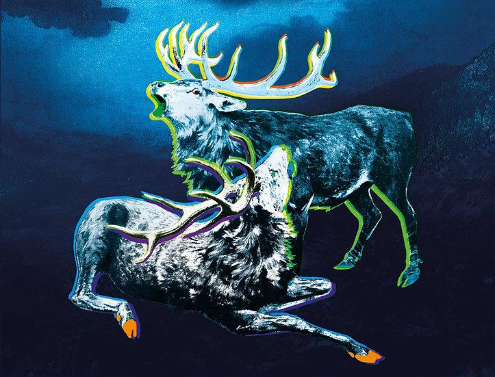 Dark Shocked Deer