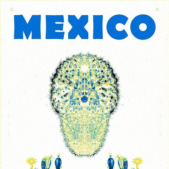 Mexican Mammillaria White