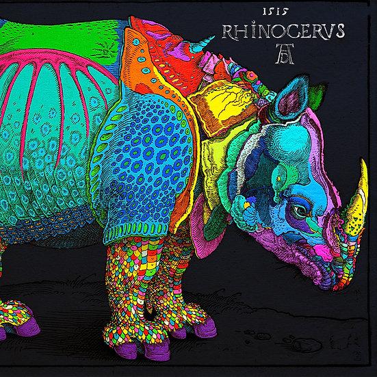 Harlequin Rhino