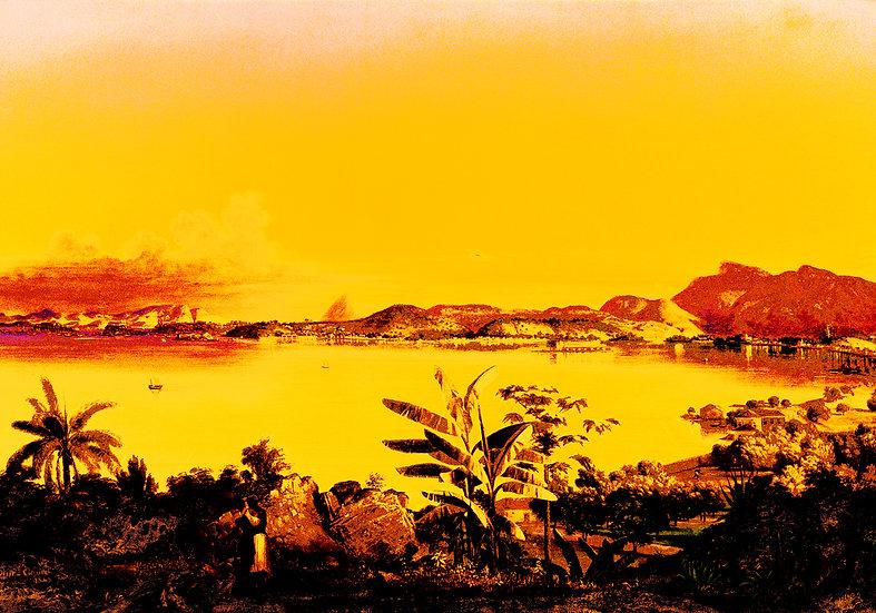 Tropical Landscapes 6