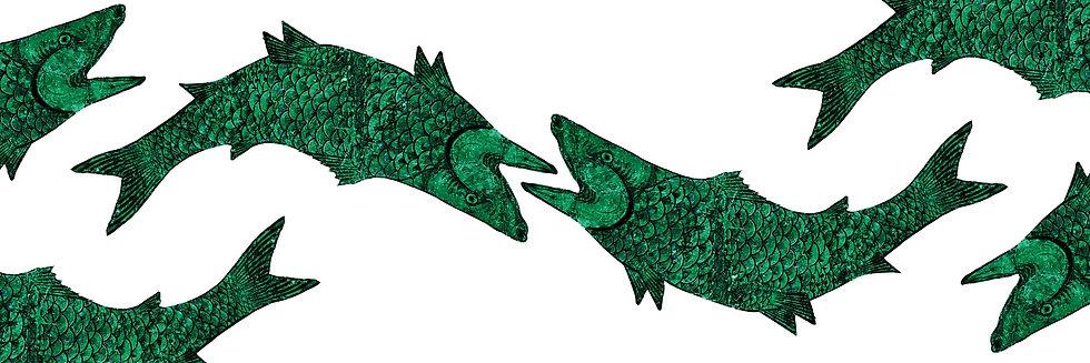 The Jonah Whale