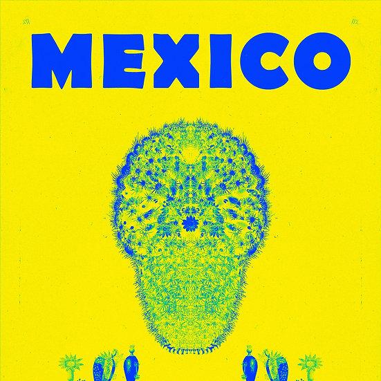 Mexican Mammillaria