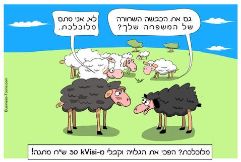 גלוית קופון של מכבסה בתל אביב