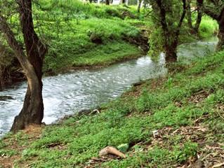 La conservación y los múltiples valores de los ríos en las comunidades locales