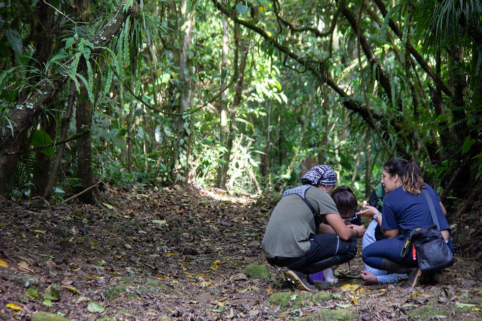 Emerging Frontiers In Tropical Ecology: Voices from the Next Generation [OFS-7]