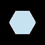 primaq kotisivu ikoni 2.png