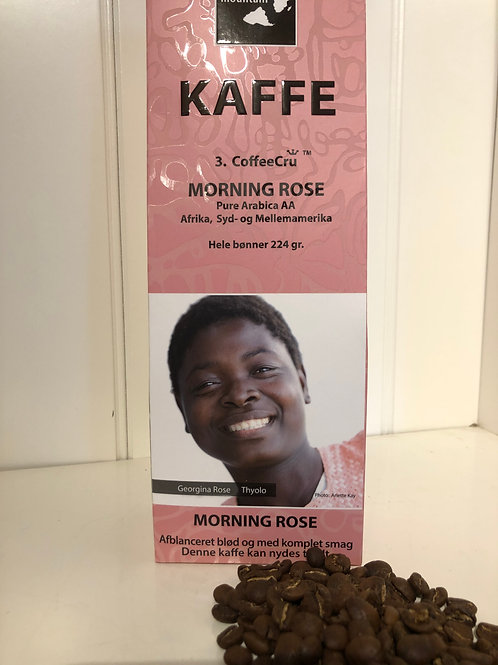 Kaffe morning rose