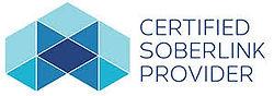 Soberlink Provider logo