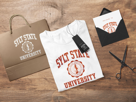 Sylt State University