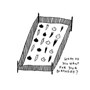 allotment album art.pngTHIS ONE FINAL.pn