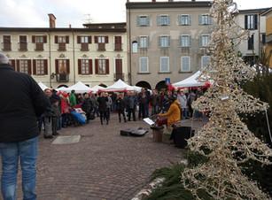 Zenzero e Miele (Varese, Busto Arsizio, Sesto Calende, Arona)