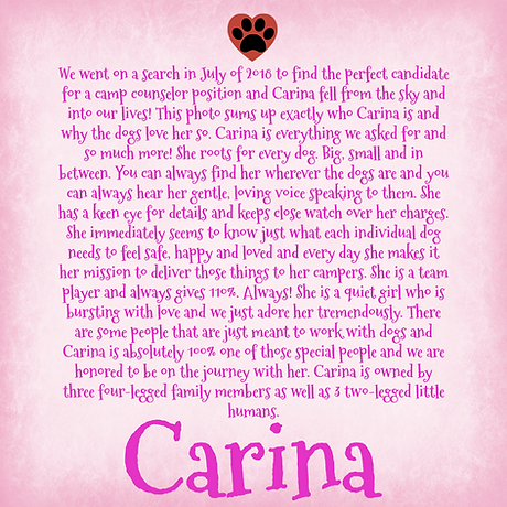 Camp Counselor Bio Background (1).png