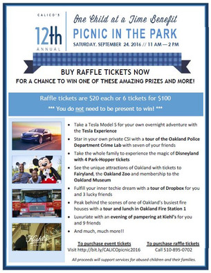 12th Annual One Child at a Time Raffle
