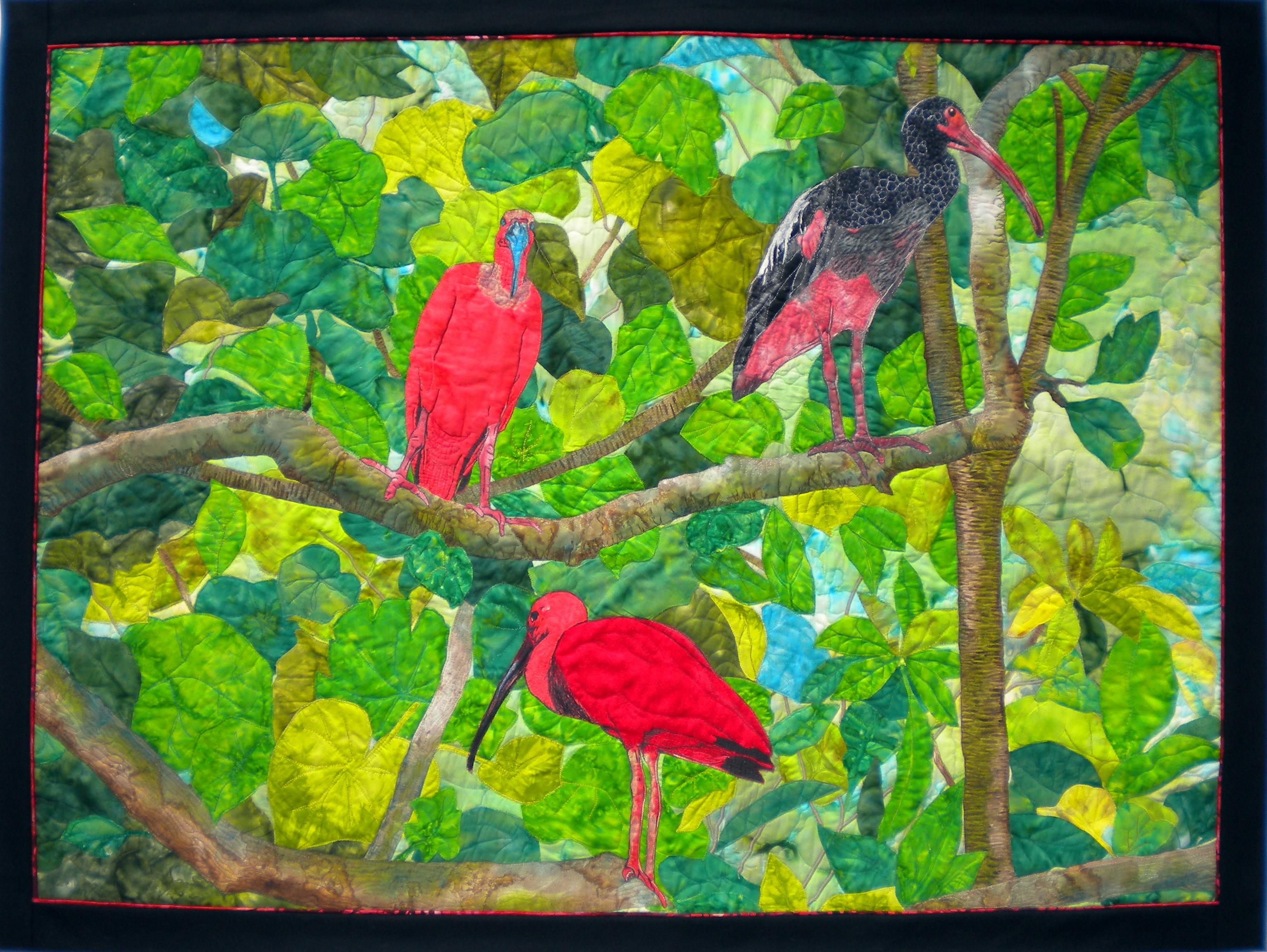 Moody Birds