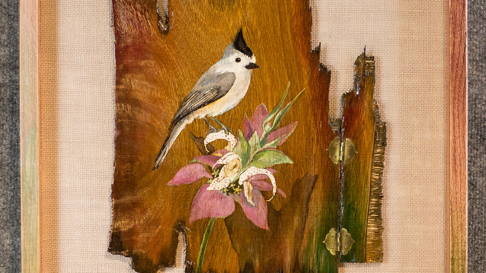 Tufted Titmouse On Horsemint