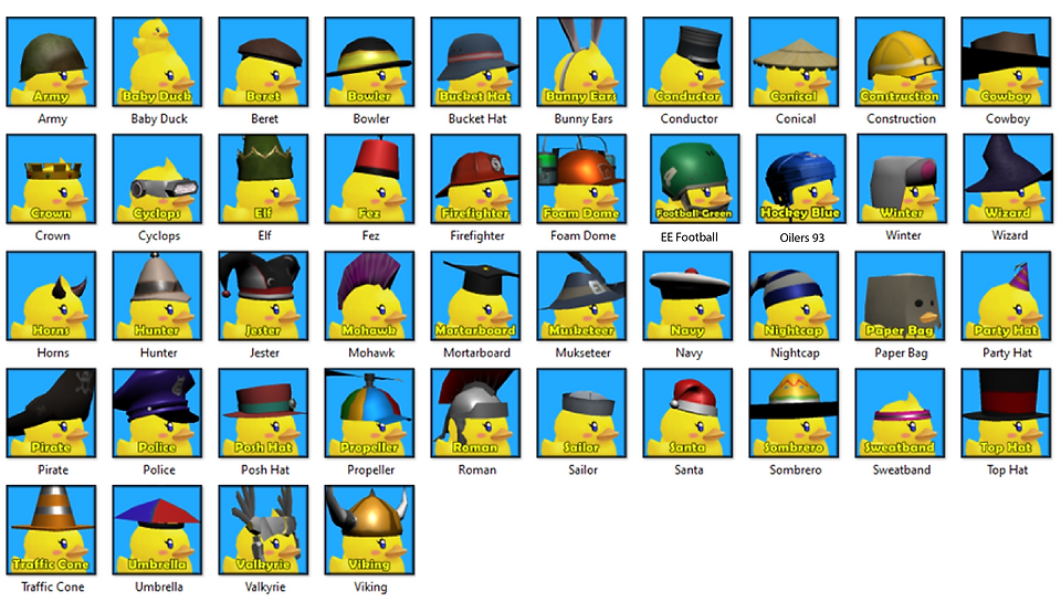 Duck Hat_Updated.png