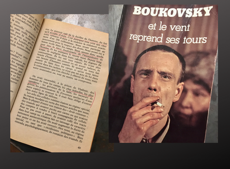 Vladimir Boukovski. An inspiration.