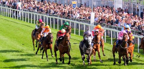 Racing at Chester Berrahri