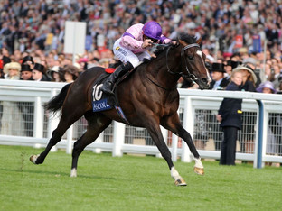 Flashmans Papers winner Royal Ascot