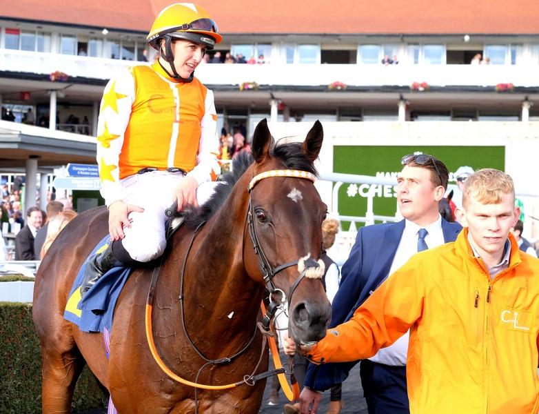 Racehorse Berrahri