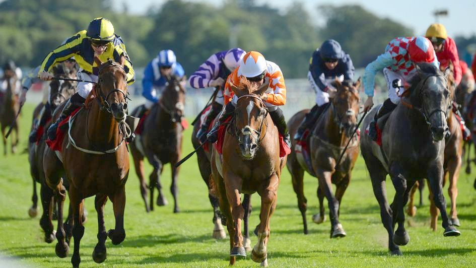 Eddystone Rock wins at the Ebor Festival