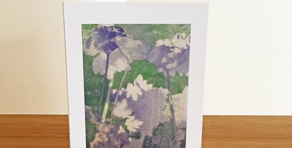Cranesbill and poppies, collage